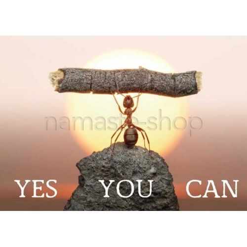 Yes You Can - CARTOLINA